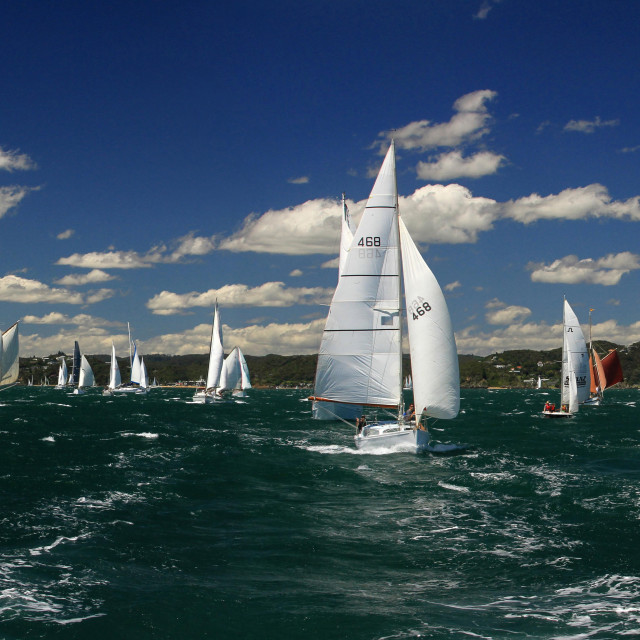 """Classic Yachts from New Zealand"" stock image"
