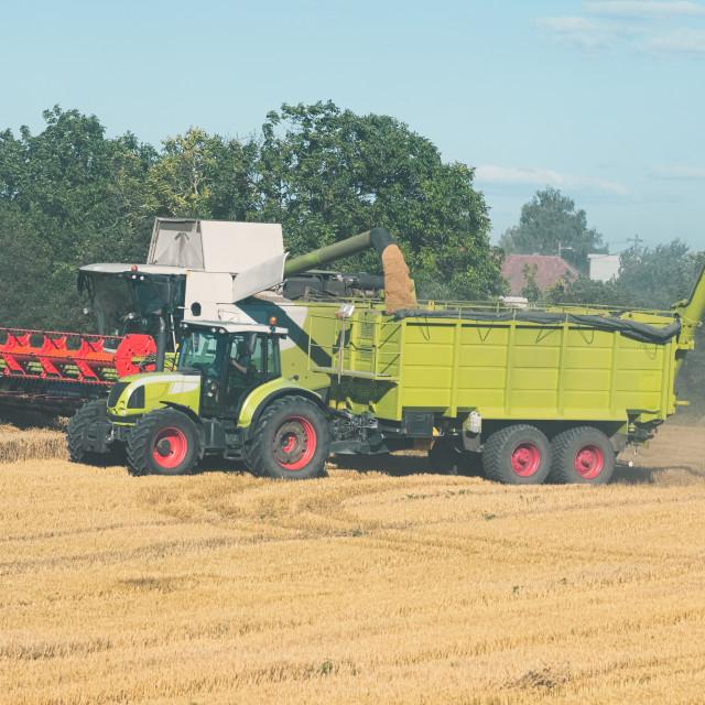 """Combine Harvester Unloading Grain"" stock image"