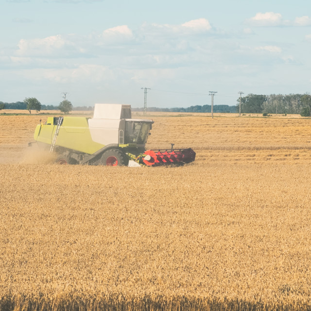 """""""Wheat Harvesting with Combine Harvester"""" stock image"""