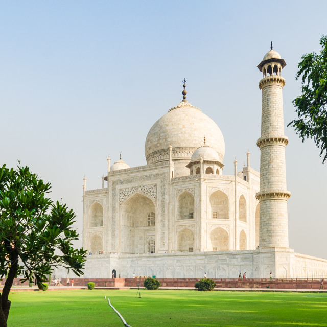 """""""The Taj Mahal mausoleum with its gardens and trees, Agra, India"""" stock image"""
