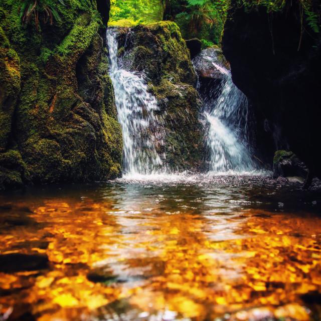 """Pucks Glen trail"" stock image"