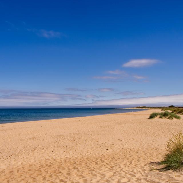 """Shell Bay in Dorset"" stock image"