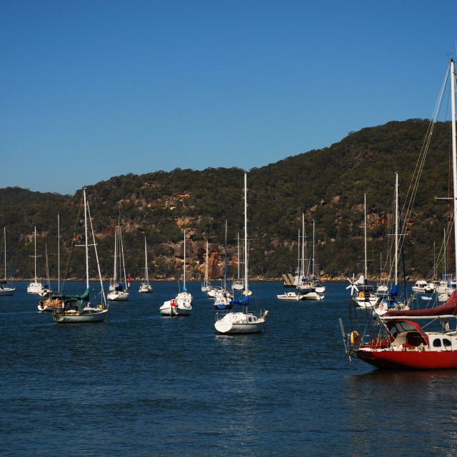 """Yachts moored on the Hawkesbury River"" stock image"