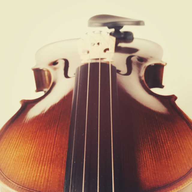 """""""string musical instrument"""" stock image"""