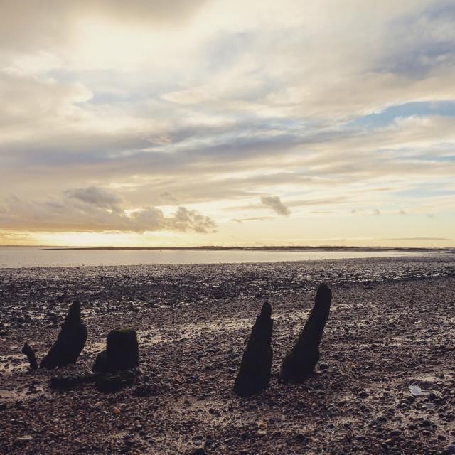 """""""Sunset on Mersea"""" stock image"""