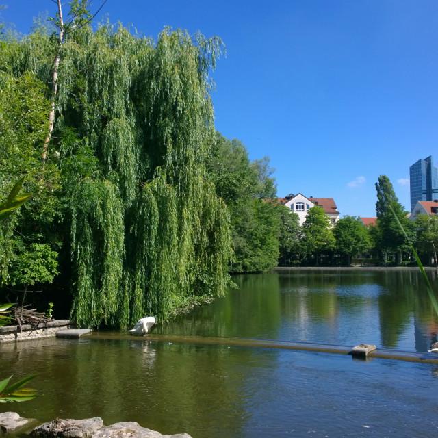 """""""Munich cityscape, idyllic view of Schwabinger See"""" stock image"""
