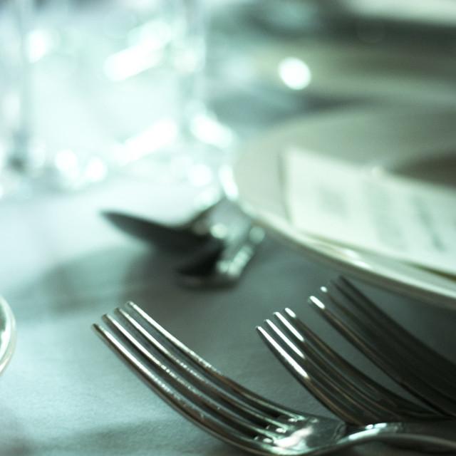 """Wedding reception banquet dinner"" stock image"