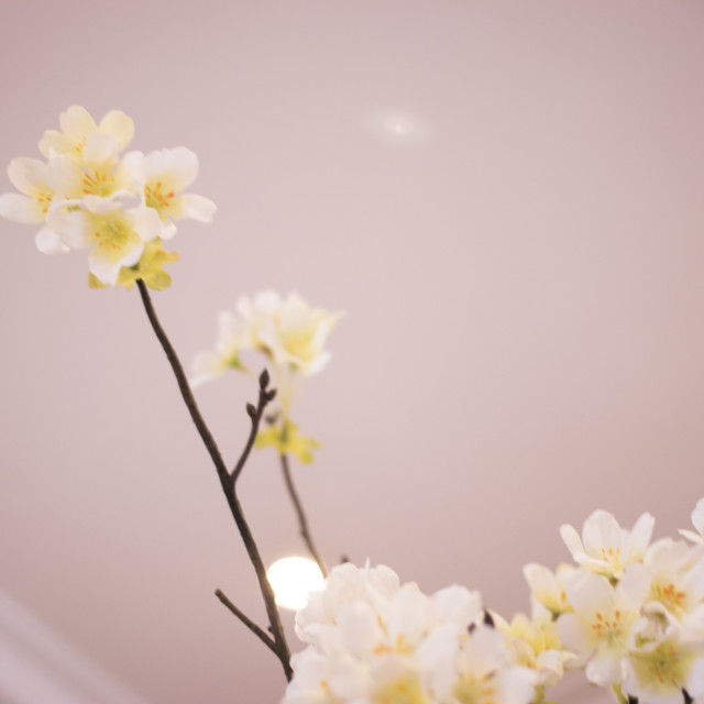 """""""Wedding flowers in marriage hotel"""" stock image"""