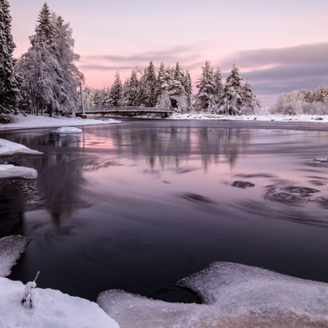 """Winter morning"" stock image"