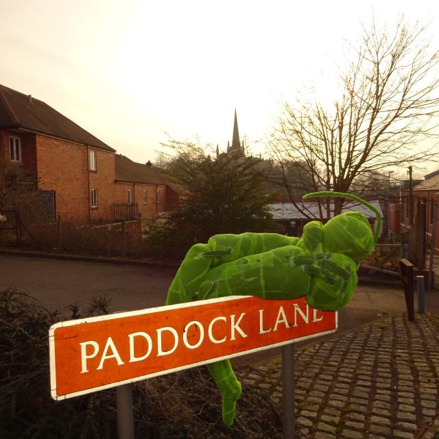 """""""Paddock Lane 3"""" stock image"""