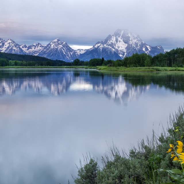 """Cloudy Morning at Oxbow Bend Grand Teton National Park"" stock image"