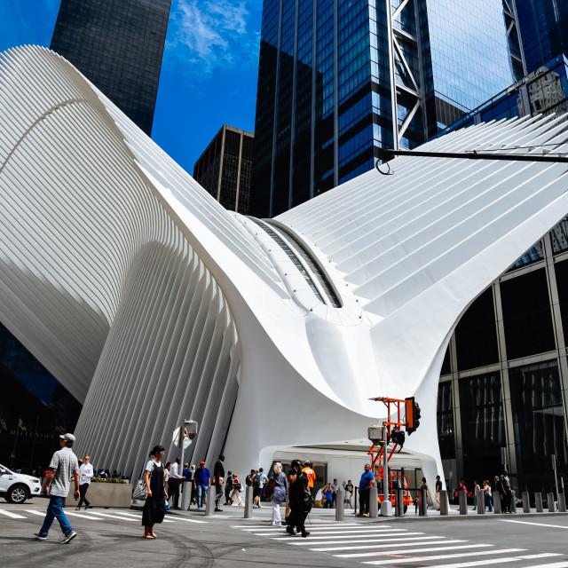 """World Trade Center Transportation Hub or Oculus in New York"" stock image"