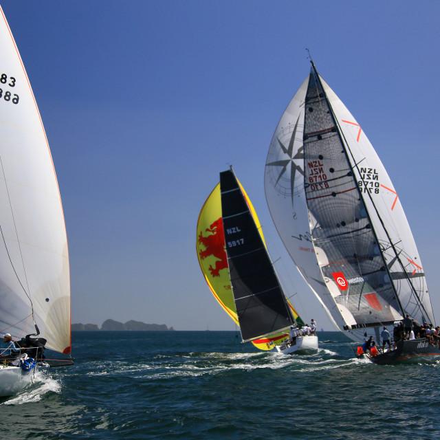 """Yachting New Zealand"" stock image"