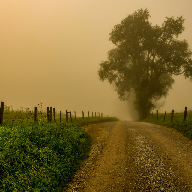 """Smoky Mountain Foggy Lane"" stock image"