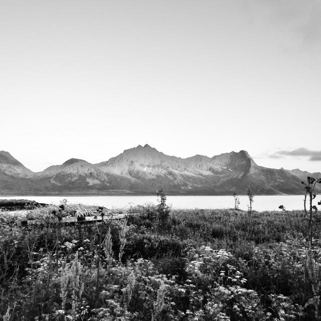 """Arctic Fjords"" stock image"