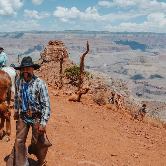 """cowboy"" stock image"