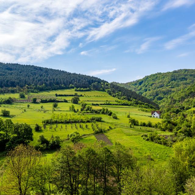 """""""Serbian rural village green springtime landscape"""" stock image"""