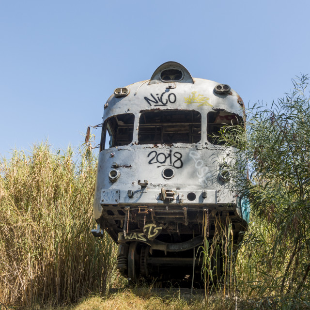 """""""Abandoned wreck of an old train wagon, Spain."""" stock image"""