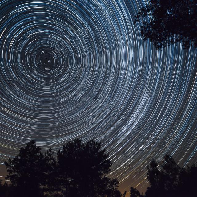 """Starry night sky, startrails between trees landscape"" stock image"