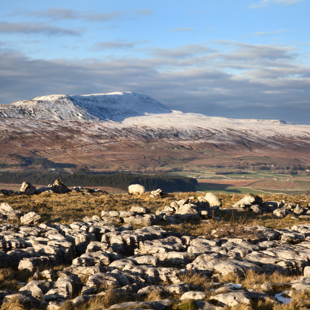 """""""Wherside in Winter and Limestone Pavement at Southerscales"""" stock image"""