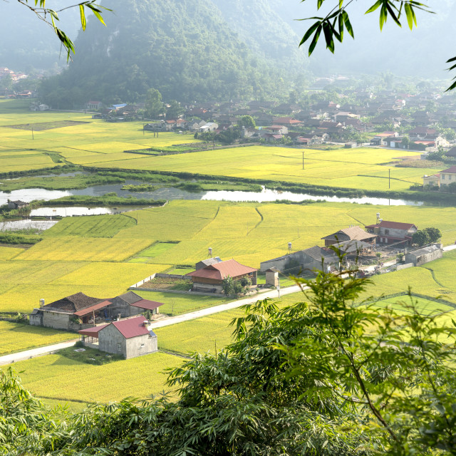 """""""Panoramic view of Bac Son valley from the top of Mount Na Lay in Bac Son district, Lang Son province, Vietnam"""" stock image"""