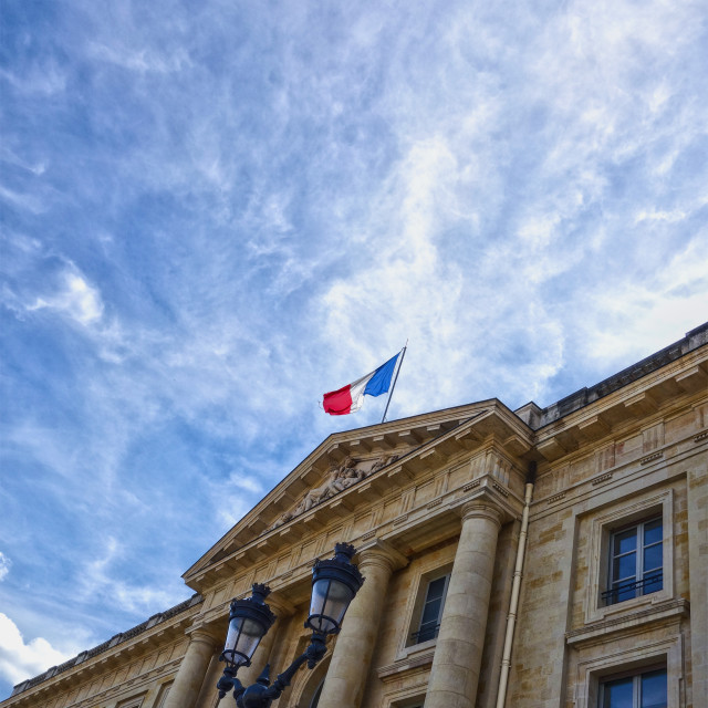 """Vive La France!"" stock image"