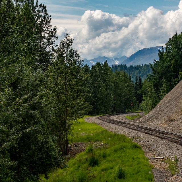 """""""The Alaska Railroad between Anchorage and Denali"""" stock image"""