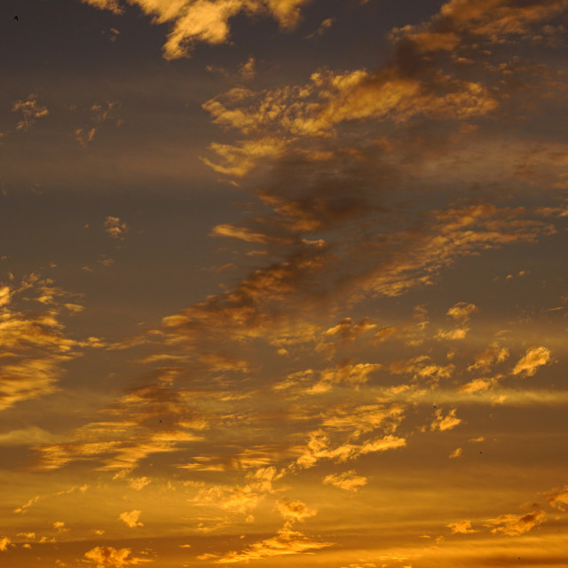 """Golden Sky"" stock image"