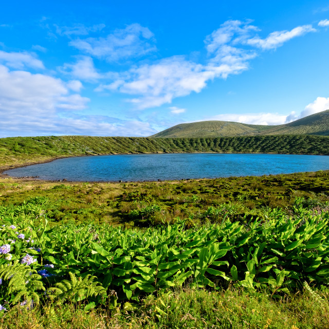 """Lagoa Rasa (Plate Lake) - Azores Islands"" stock image"