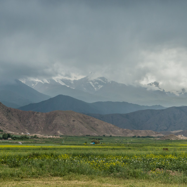 """""""Agricultural landscape and mountain beyond, near Bokonbayevo, Kyrgyzstan."""" stock image"""