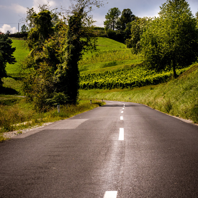 """Road To Somewhere"" stock image"
