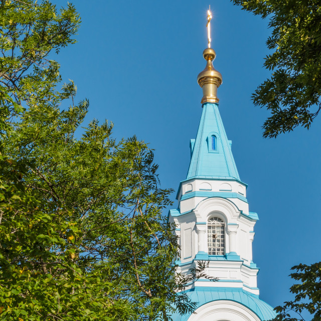 """""""On the background of blue sky's dome, surrounded by trees."""" stock image"""