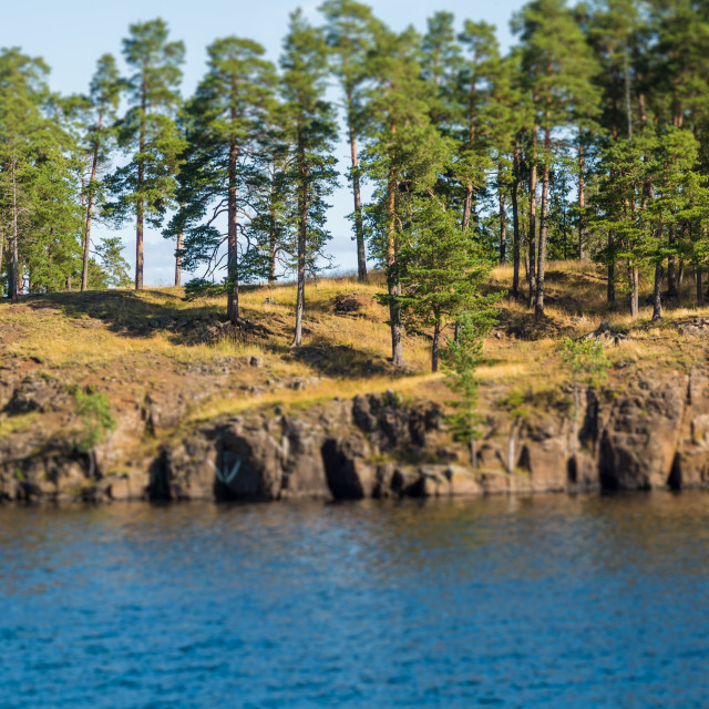 """""""Rocky coast of the river with a small piece of forest. Tilt Shift Effect"""" stock image"""