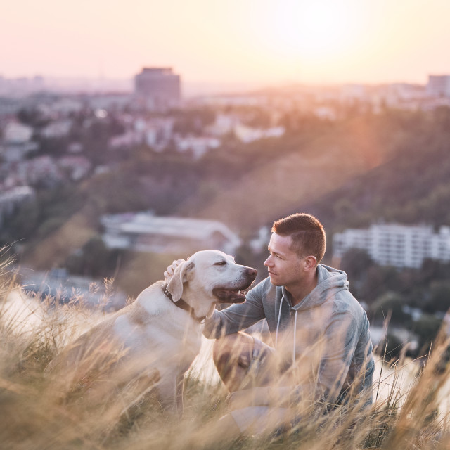 """Young man and his labrador retriever at sunrise"" stock image"