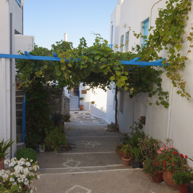 """""""Picturesque alley in Chora village of Amorgos island in Cyclades, Greece"""" stock image"""