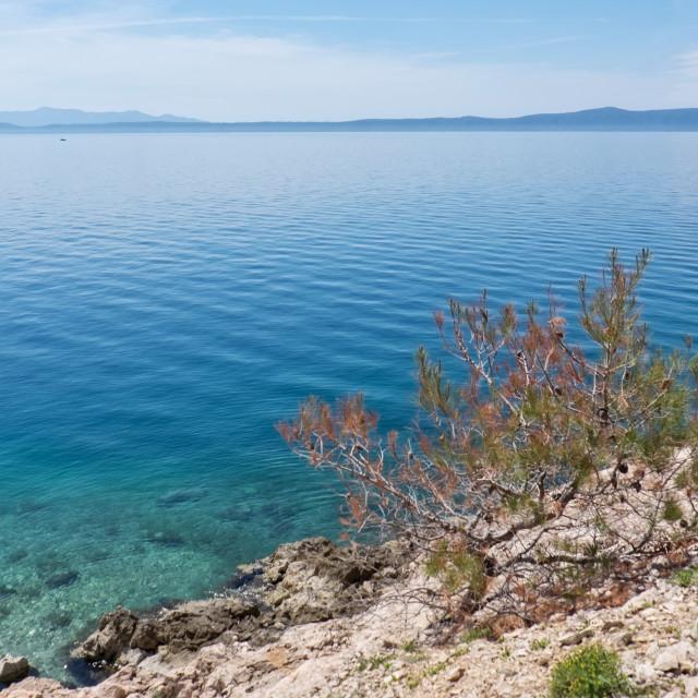 """Makarska Riviera"" stock image"