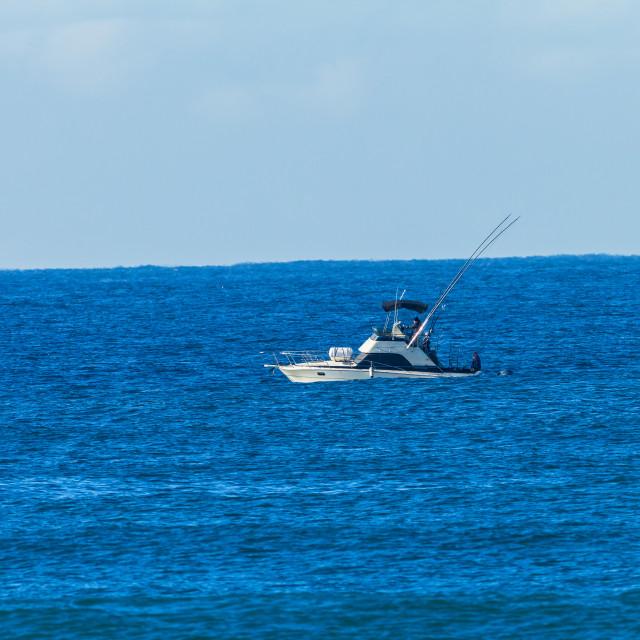 """Boat Game Fishing Blue Ocean"" stock image"