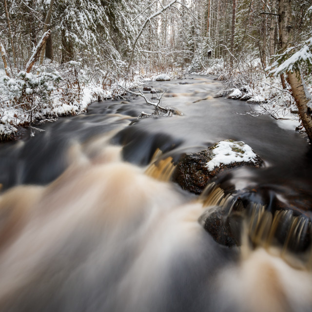 """Forest stream in winter"" stock image"