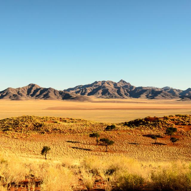 """Stunning scenery of the Namib"" stock image"