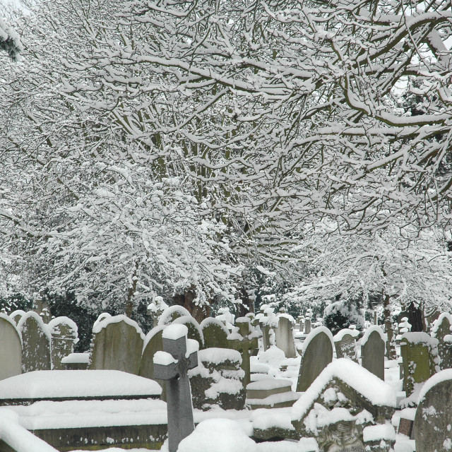 """""""Snow Covered Graveyard"""" stock image"""