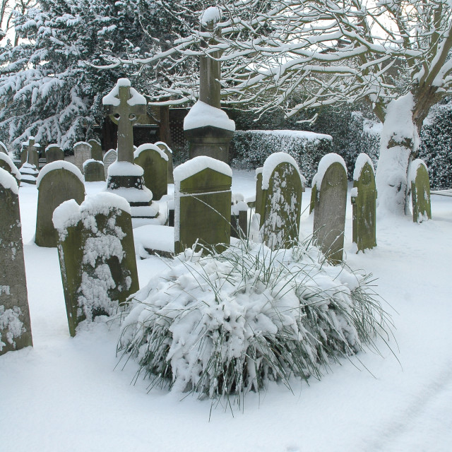 """""""Gravestones With Snow"""" stock image"""