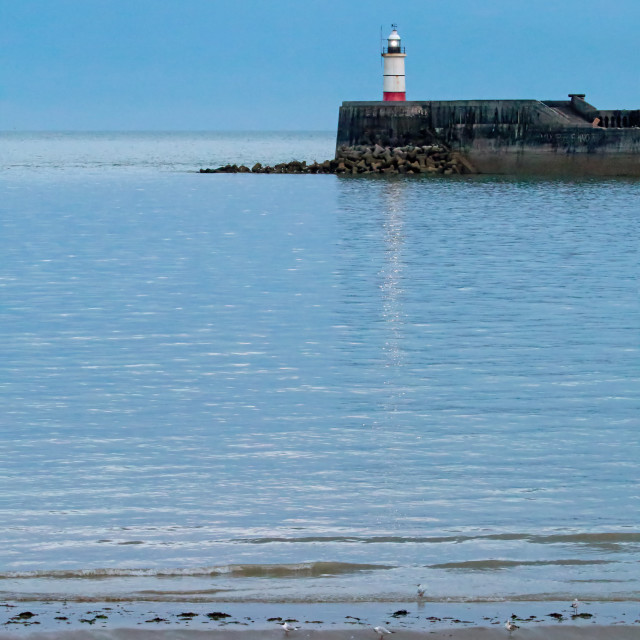 """Newhaven Lighthouse at Low Tide"" stock image"