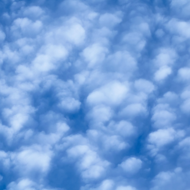 """Cirrocumulus Clouds Fill Frame"" stock image"