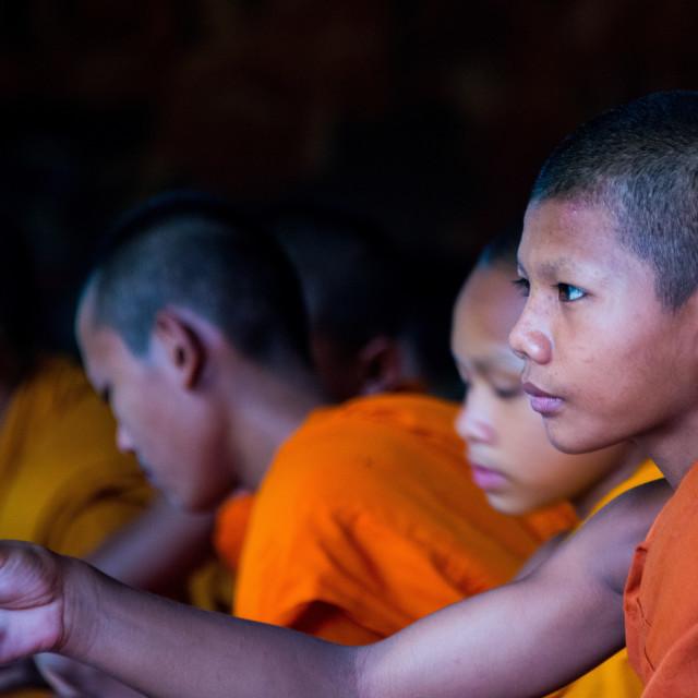 """Novice Monks"" stock image"