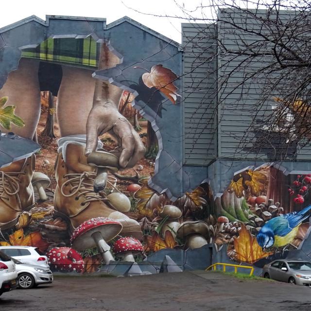 """Glasgow Graffiti"" stock image"