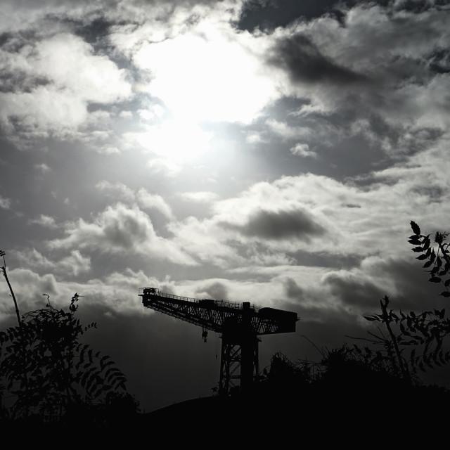 """Titan amongst the Weeds"" stock image"