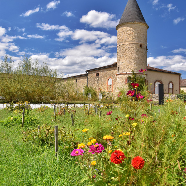 """Château Guiraud, Sauternes, France"" stock image"