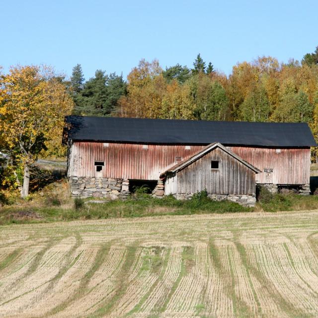 """""""Autumn on Orust, Sweden"""" stock image"""
