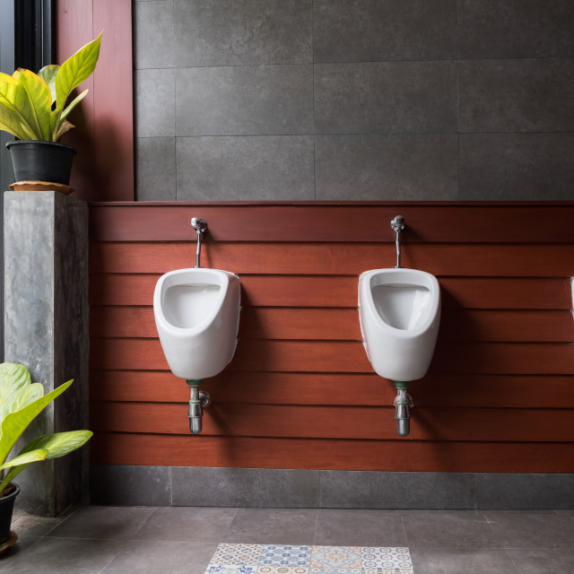 """modern restroom with plant decoration"" stock image"