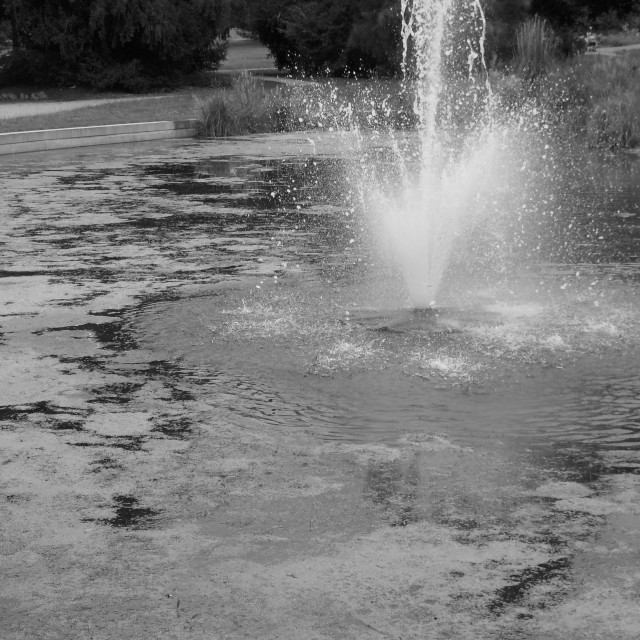"""""""Fountain On The Pond"""" stock image"""